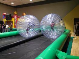 Hamster Ball Race